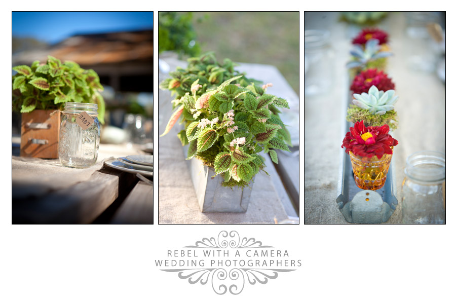 Crabapple Fredericksburg vintage country texas wedding